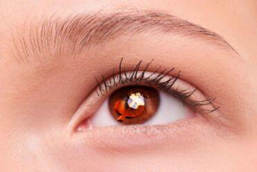 La duración del microblading en cejas